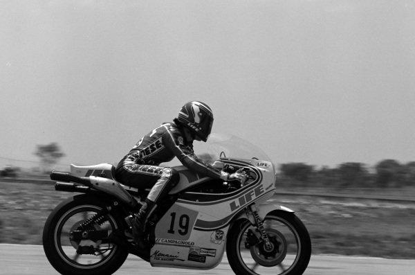Marco Lucchinelli, Suzuki.