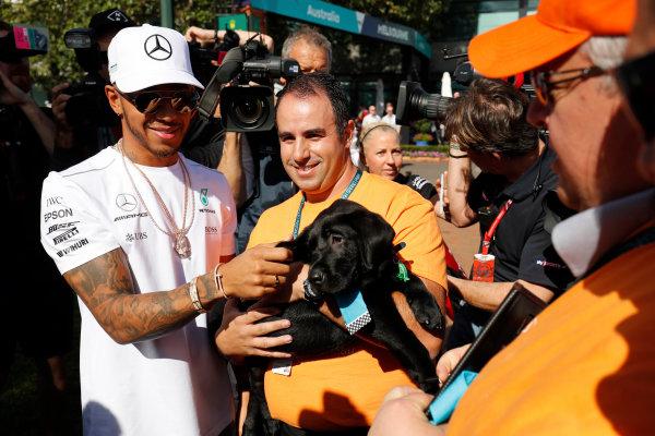 Albert Park, Melbourne, Australia. Wednesday 22 March 2017. Lewis Hamilton, Mercedes AMG, meets a fan with a dog. World Copyright: Sam Bloxham/LAT Images ref: Digital Image _W6I0304