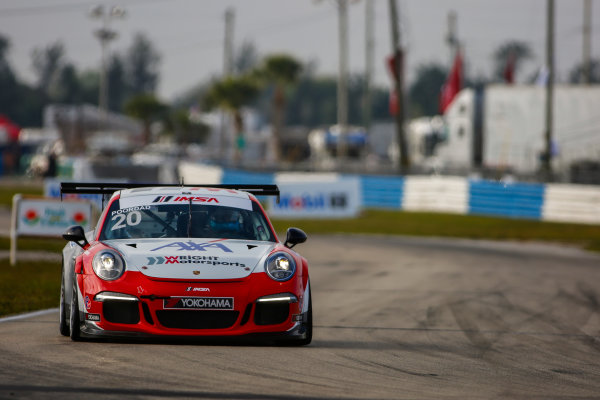 16-18 March, 2016, Sebring, Florida, USA 20, Fred Poordad, Platinum, M, 2014 Porsche ?2016, Jake Galstad LAT Photo USA
