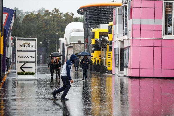 Rain falls in the paddock.