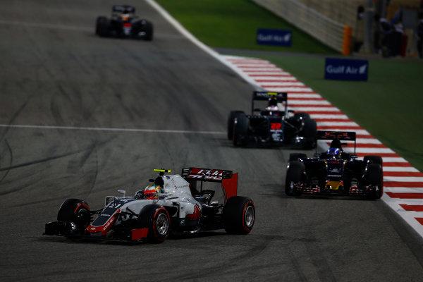 Bahrain International Circuit, Sakhir, Bahrain. Sunday 3 April 2016. Esteban Gutierrez, Haas VF-16 leads Max Verstappen, Toro Rosso STR11 Ferrari and Jenson Button, McLaren MP4-31 Honda.  World Copyright: Hone/LAT Photographic ref: Digital Image _ONZ2123