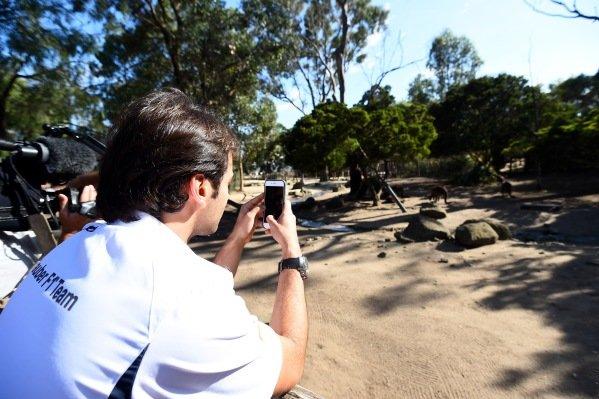 Felipe Nasr (BRA) Sauber at Melbourne Zoo at Formula One World Championship, Rd1, Australian Grand Prix, Preparations, Albert Park, Melbourne, Australia, Wednesday 16 March 2016.