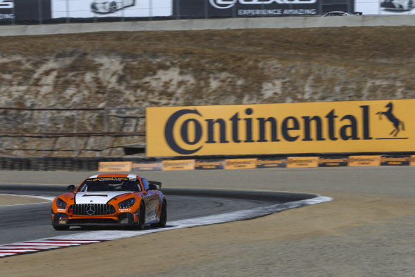 #65 Murillo Racing, Mercedes-AMG, GS: Tim Probert, Brent Mosing