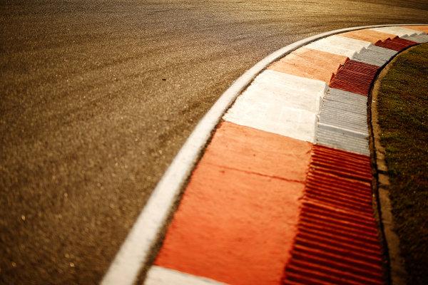 Sepang International Circuit, Sepang, Kuala Lumpur, Malaysia. Thursday 26 March 2015. Track and kerbing. World Copyright: Glenn Dunbar/LAT Photographic. ref: Digital Image _89P6043