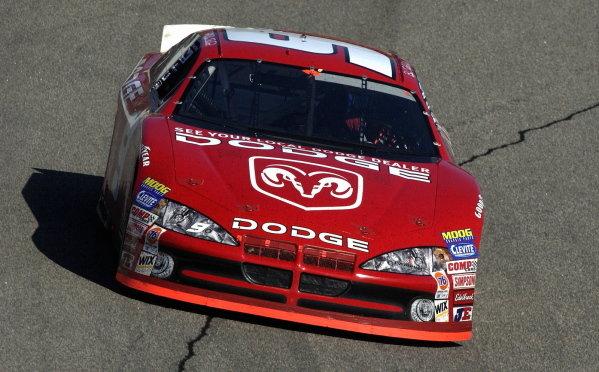 Race winner Bill Elliott (USA), Dodge Dealers. NASCAR Winston Cup Series, Rd35, Pop-Secret Microwave Popcorn 400, Rockingham, North Carolina, USA. 9 November 2003.DIGITAL IMAGE