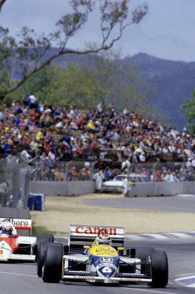 1986 Australian Grand PrixAdelaide, Australia. 24th - 26th October.Nelson Piquet (Williams FW11 Honda) leads Alain Prost (McLaren MP4/2 TAG Porsche). Action. World Copyright: LAT Photographicref: 86 AUS 45
